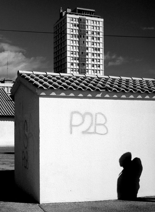 JCB-PDB-011b